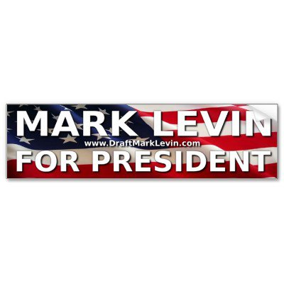Levin for prez bumper
