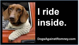 Newt romney dog abuse I_ride_inside