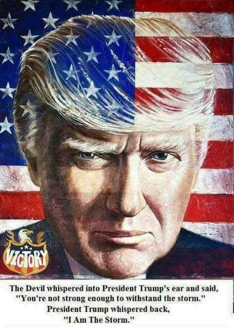 Trump i am storm